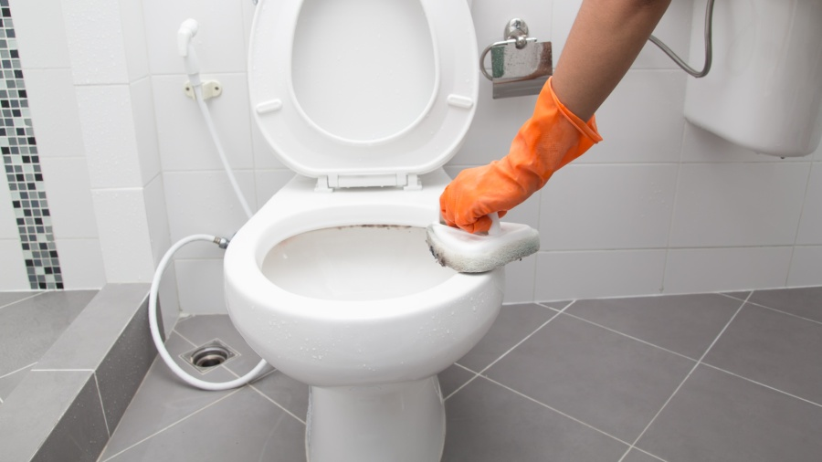 How to Clean a Toilet - A Easy & Practical Cleaning Tips